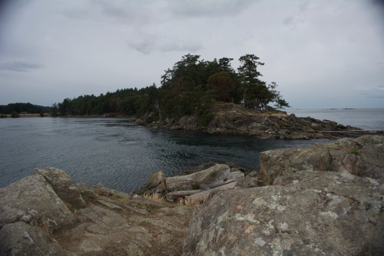 Saturna Island, Canadá: View from our hike.