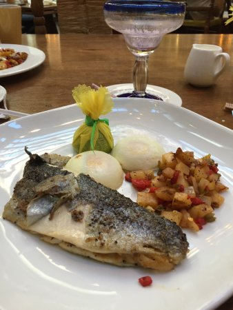 Description: Trout, poached eggs and hash browns for breakfast!