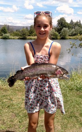 Hat Creek, Kalifornien: Great Trout Fishing in our Pond!