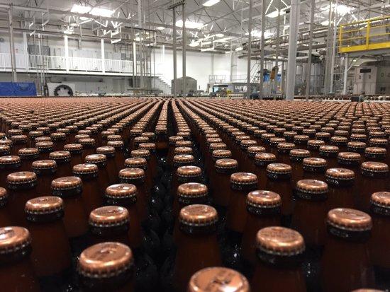 Sierra Nevada Brewing Company: photo1.jpg
