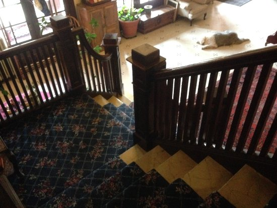 Union, ออริกอน: The stairs from room level to the lobby. That's Rosie the big dog on the floor.