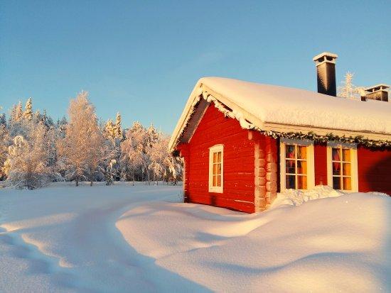 Havu Arctic Holidays