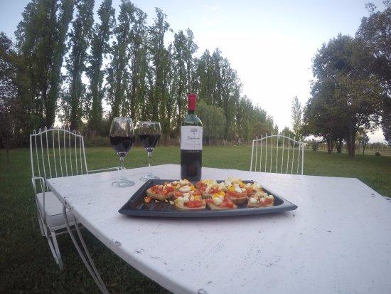 Posada Cavieres Wine Farm: jardim da pousada