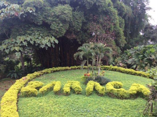Foto Santo Domingo