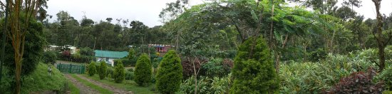 Kalarickal Heritage Bungalow: Panoramic view from outside our room