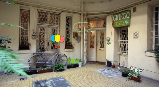 Ginkgo Hostel: Entrance from the courtyard