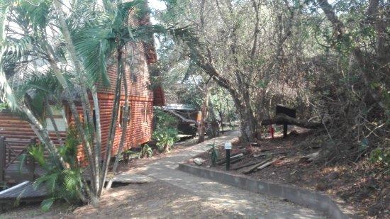 Sodwana Bay Lodge: IMG_20161001_134919_large.jpg