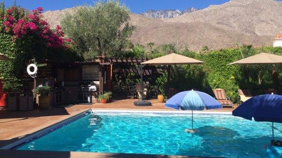 Desert Riviera Hotel: Mountain view