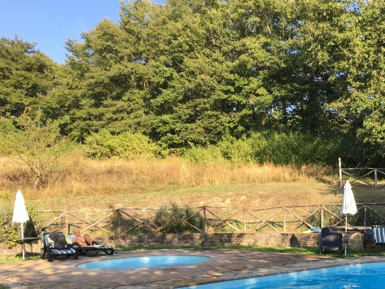 Pietralunga, Italien: Het zwembad