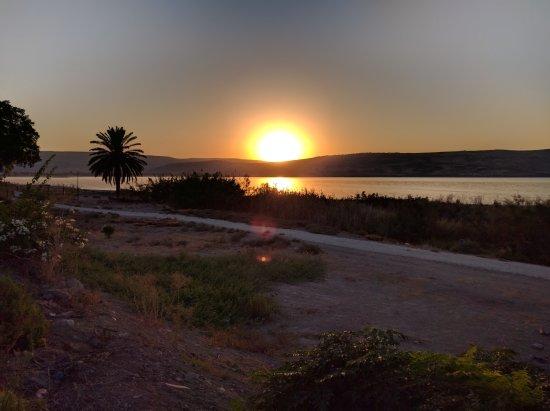 HaOn Israel  city photo : HaOn, Israel: IMG 20161001 180339 large