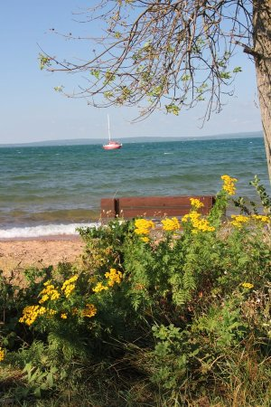 Joni's Beach: View on Lake Superior with some beautiful flowers