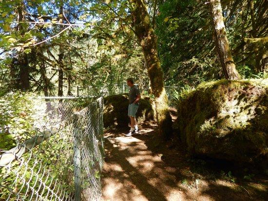 พอร์ตอัลเบอร์นี, แคนาดา: Trail around falls area