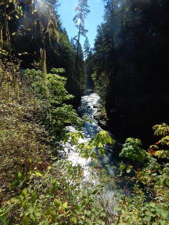 พอร์ตอัลเบอร์นี, แคนาดา: Stamp River Falls