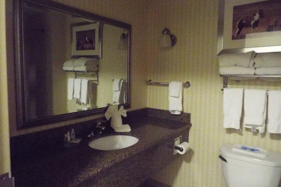 Comfort Suites Amish Country照片