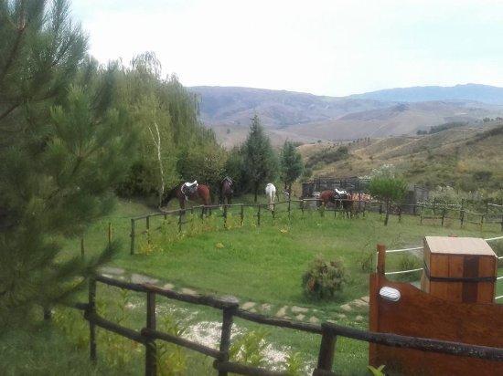 Turismo Rurale Leanza: sosta di cavalli lungo il percorso della dorsale dei nebrodi  con assistenza a