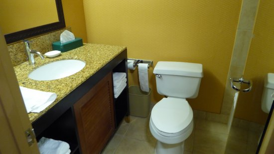 Holiday Inn Houston Intercontinental Airport: photo1.jpg