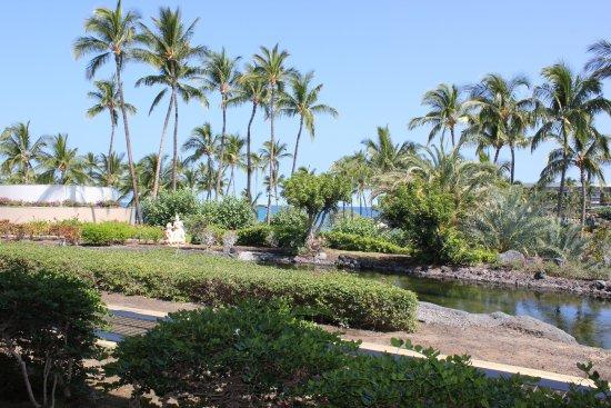 Landscape - Picture of Hilton Waikoloa Village, Island of Hawaii - Tripadvisor