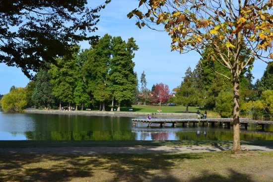 Greenlake Guest House: Greenlake Park, just a few minutes walk from Greenlake Guesthouse