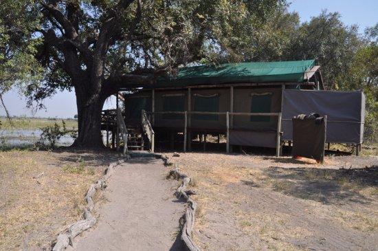 Pom Pom Camp: Tent # 9