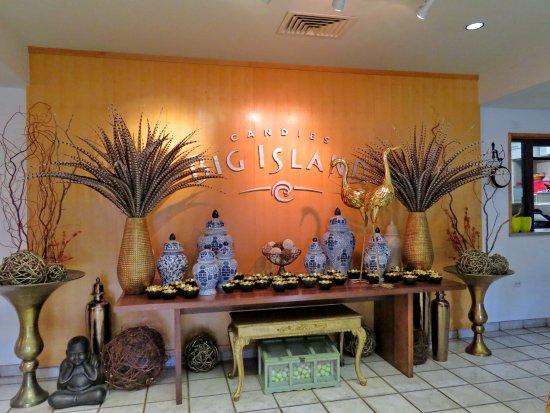 Big Island Candies : Pheasant feathers in Hawaii!. Welcoming artful display. Manty throughout showroom.