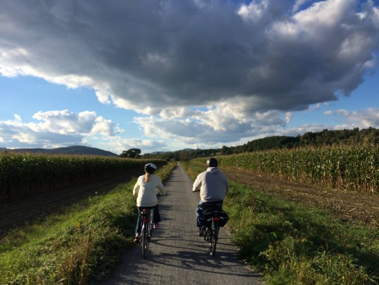 Lamoille Valley Bike Tours