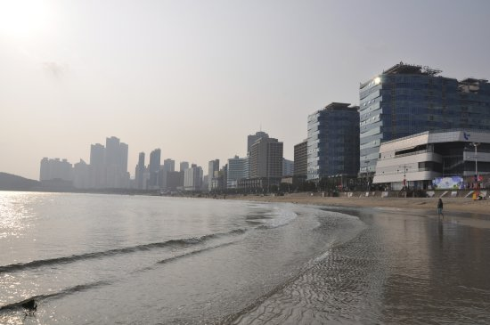 Sunset Business Hotel Haeundae Beach At The End Of Street