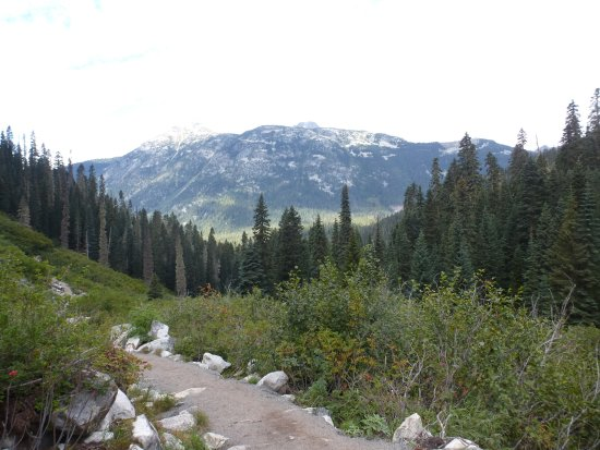 Pemberton, Canada: Part of the hiking trail