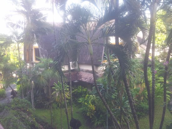 Hotel Vila Lumbung: Photo of villa and grounds in hotel