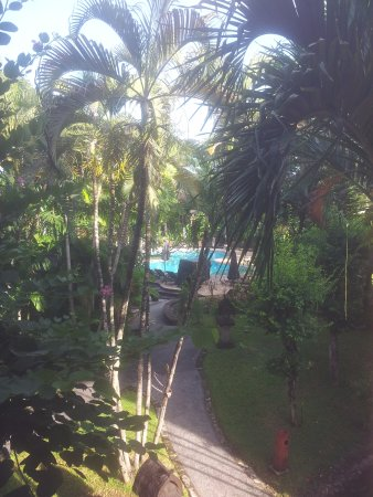 Hotel Vila Lumbung: View from our hotel room