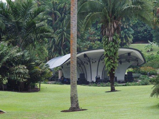 Walking through the gardens photo de jardin botanique de for Au jardin les amis singapore botanic gardens