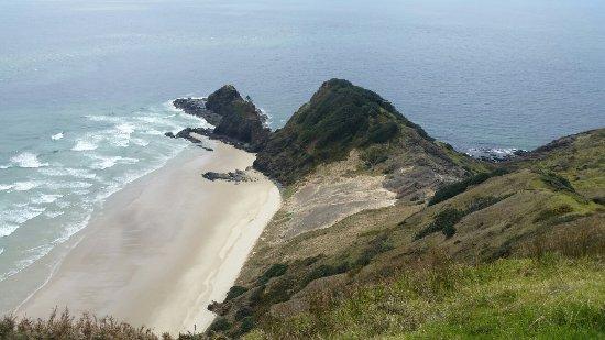 North Island, New Zealand: 20161001_130733_large.jpg