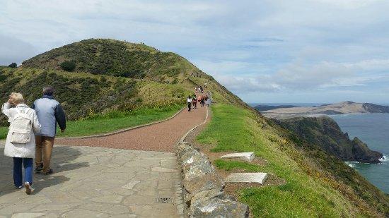 North Island, New Zealand: 20161001_130353_large.jpg