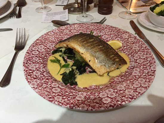 Tarrant Monkton, UK: Sea Bass
