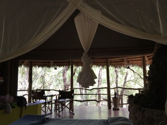 Jaci's Safari Lodge: photo3.jpg
