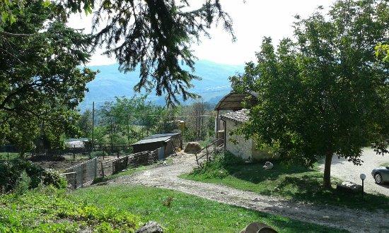 Macerata Feltria, Itália: 20161001_152058_large.jpg