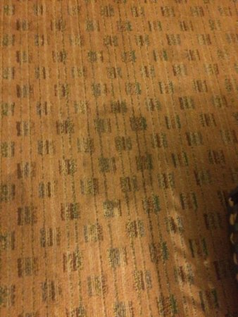Quality Inn Morganton: photo1.jpg