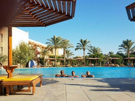The Desert Rose Resort Bild Von Desert Rose Resort Hurghada