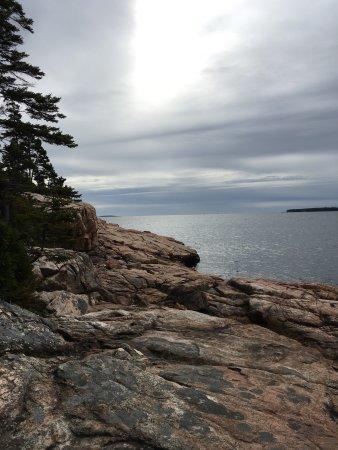 Ship Harbor Nature Trail : photo6.jpg
