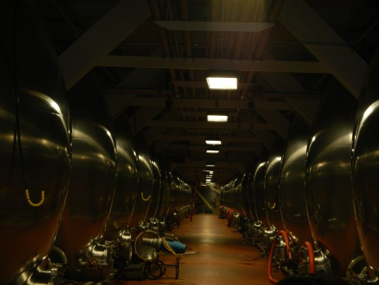 Budweiser Brewery Tours: So much beer !!!