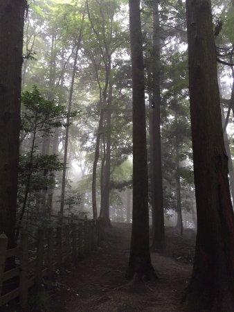 Mt. Hodosan : photo0.jpg