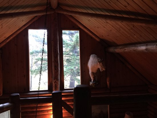 Augusta, MT: Looking out from the loft in the Wilderness cabin