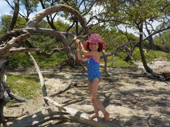 Foto de Playa Negra