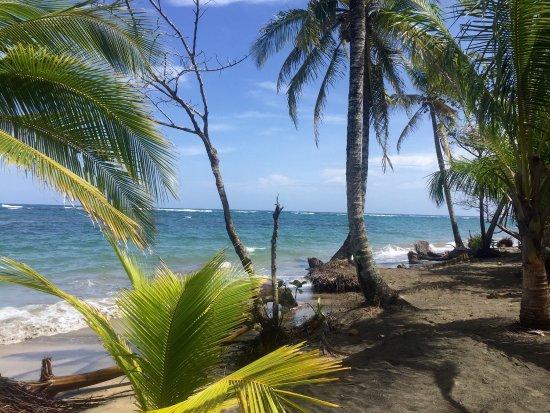 Cabinas Caribe Luna: photo3.jpg