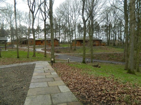 Ellesmere, UK: Beautiful lodges.