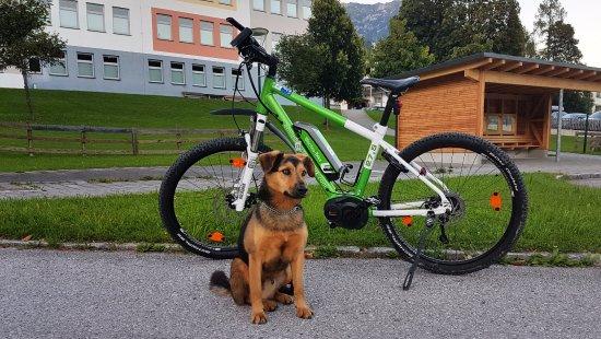 Hotel Restaurant Ennstalerhof: Kölcsönözhető e-bike