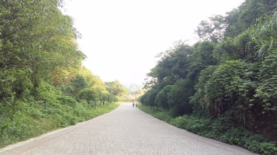 Changshan County, Chine : Дорожки для прогулок рядом