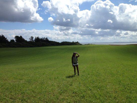 Ranum, Dänemark: The green fields of the island.