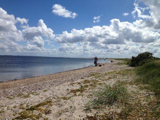 Ranum, Dinamarca: The beach of Livø.