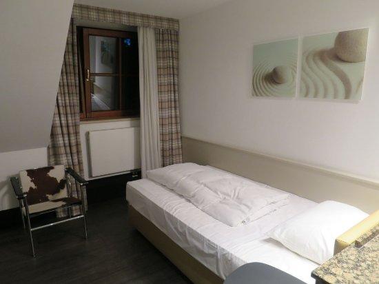 Unterfohring, Alemania: Single Room