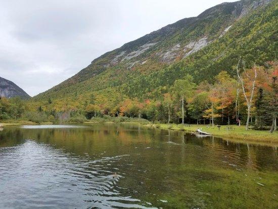Hart's Location, Nueva Hampshire: Stunning